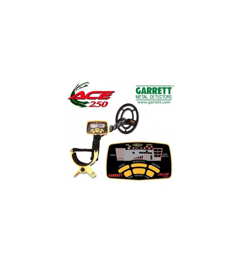 Garraett ACE 250