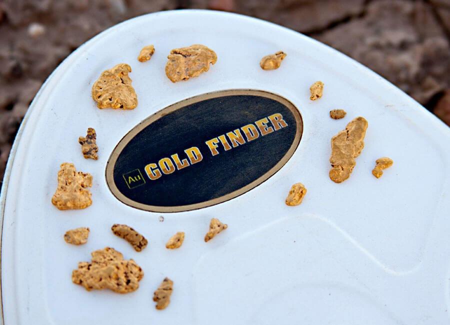 noktamakro-detectors-au-gold-finder-imag